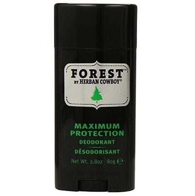 forest herban